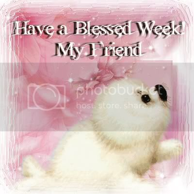 Have a Blessed Week Pictures, Images and Photos